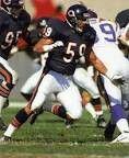 Ron Rivera, LB - Chicago Bears