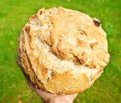 Hämmentäjä: Aprikoosi-cashewpähkinäleipä. Sourdough bread with apricots and cashew nuts.