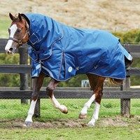 Saxon 600d Standard Neck Lite Iv Unisex Horse Rug Turnout Blue Gold All Sizes