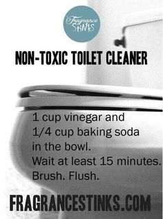 Non Toxic Toilet Cleaning