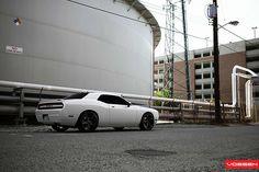 Dodge Challenger SRT8 - VVSCV3
