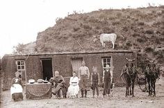 Nebraska pioneer family in front of sod house with cow on roof, 1886