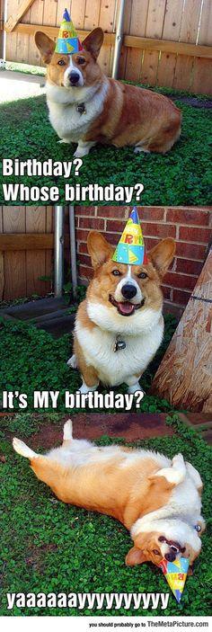 Whose Birthday You Say