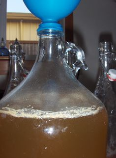 A Life Unprocessed: Making Honey Wine