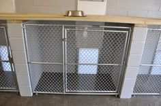 large image of kennel photos
