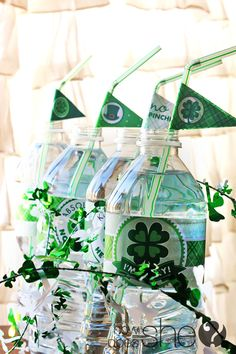 Lucky You! Free St Patrick's Day Printables! Set includes water bottle labels, flags, badges, and more!!