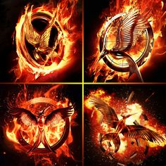 The Hunger Games series movie logos Catching Fire and Mockingjay<----- Okay so that's good. They have our Mockingjay breaking free.