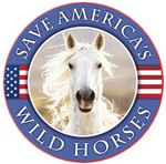 The non- profit Cloud Foundation is dedicated to preventing the extinction of Cloud's wild horse herd who lives high in the Pryor Mtns. in Montana,  through education, media events and programming, and public involvement. The Foundation is also determined to protect other wild horse herds on public lands, especially isolated herds with unique characteristics and historical significance.