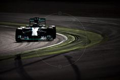 2014 Italian Grand Prix | F1 Photos by Darren Heath