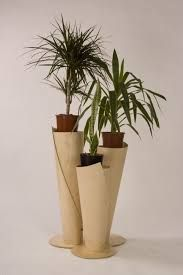 images of fern plant stands - Google Search