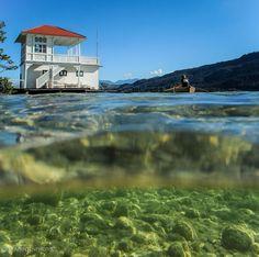 Einfach nur perfekt! ☀️ Unser Wörthersee ist wohl einer der schönsten und wärmsten Seen Europas und wir schätzen uns äußerst glücklich, gerade hier zu leben und zu arbeiten. 😀 Was ist deine Motivation?   #wienerroither #maguat #bäckerei #brot #handgemacht #bäcker #wörthersee #kärnten #austria #geschmackderKindheit Carinthia, Seen, Mountains, Mansions, House Styles, Instagram, Nature, Klagenfurt, Travel