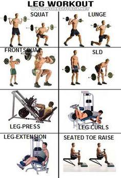 Leg Workout - Healthy Fitness Exercises Calves Legs Butt Sixpack - FITNESS HASHTAG