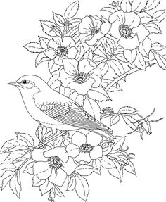 Adult Bird Coloring Pages from Animal Coloring Pages category. Printable coloring pages for kids that you can print and color. Check out our series and printing the coloring pages free of charge. Spring Coloring Pages, Coloring Pages To Print, Animal Coloring Pages, Coloring Book Pages, Simple Coloring Pages, Coloring Pages For Adults, Flower Coloring Sheets, Printable Flower Coloring Pages, Book Flowers