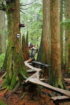 Would you dare ride this #mtb trail? I'd try!