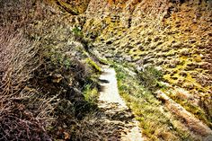 Trail Whitewater Preserve, Trail, Country Roads, Abstract, Artwork, Summary, Work Of Art, Auguste Rodin Artwork, Artworks