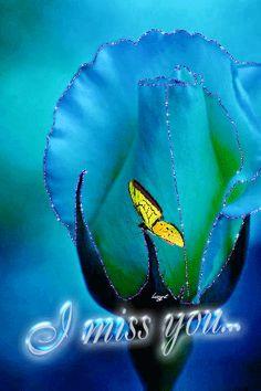 mariposas y flores encontradas en la web