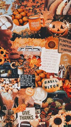 Orange aesthetic for autumn – halloween – Fall