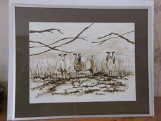aquarel schapen in sepia 40 x 50 cm  incl aluminium lijst 95 euro