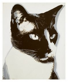 Did you know that Andy Warhol was a huge cat lover? He and his mother, Julia Warhola, both loved cats and had several of their own, all named Sam except for one called Hester. In the before Warhol became famous. Andy Warhol Pop Art, Jasper Johns, Illustrations, Illustration Art, Gatos Cats, Cat Colors, Art Moderne, Siamese Cats, Ragdoll Kittens