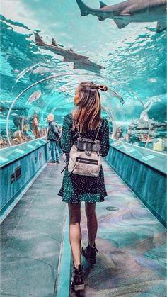 - Aquarium - Ripley's Aquarium in Toronto, Canada. Ripley's Aquarium of Canada is a public . Ripley's Aquarium in Toronto, Canada. Ripley's Aquarium of Canada is a public aquarium in Toronto, Ontario, Canada. The aquarium is. Toronto Pictures, Zoo Pictures, Travel Pictures, Travel Photos, Toronto Photography, Photography Poses, Travel Photography, Toronto Aquarium, Ripleys Aquarium Toronto