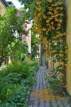15 ruelles vertes de Montréal