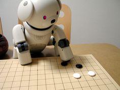 A robot from sony named 'aibo' likes to play igo.