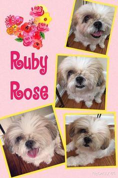 11/14/16 STILL WAITING!!  Ruby Rose