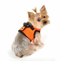 Dogs harnesses are a type of products that can easily do the work of a collar and in a much better way.