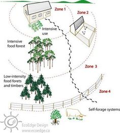 The Goals of Permaculture Homestead Layout, Farm Layout, Forest Garden, Urban Homesteading, Hobby Farms, Plantation, Edible Garden, Aquaponics, Dream Garden