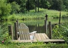 1000 images about ponds on pinterest duck house farm for Pond pier plans