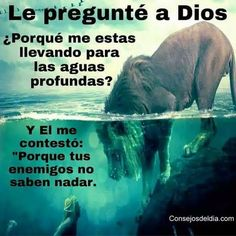 """asked God why He taking me for into deep water. And He answered me, """"Because your enemies do not know how to swim.""""I asked God why He taking me for into deep water. And He answered me, """"Because your enemies do not know how to swim. Bible Quotes, Bible Verses, Me Quotes, Faith Quotes, Quotes En Espanol, Spanish Quotes, Quotes About God, Dear God, Faith In God"""