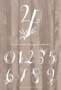 Stunning Hand Drawn Numbers - Designs By Miss Mandee