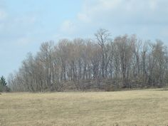 Large effigy mound in the shape of a bear, located south of Newark, Ohio. It is believed to be the largest effigy mound in Ohio Ohio Historical Society, Effigy Mounds, Nephilim Giants, Newark Ohio, Mound Builders, Bigfoot Sightings, City Of Columbus, Native American History, Archaeological Site