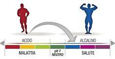 Alcalinizzare il corpo è fondamentale per stare meglio. Scopri 10 strategie per rendere meno acido il tuo organismo, cosa mangiare e i cibi da evitare.