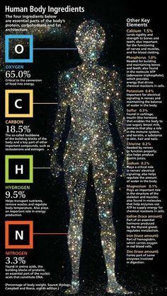 Aqui está um visual prático do que está dentro do corpo humano. Do que nos faz, bem, nós. Embora possa parecer bastante simples para medir todas as várias partes de um ser humano, ele é realmente muito complicado.