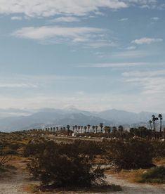 Palms Springs Getaway