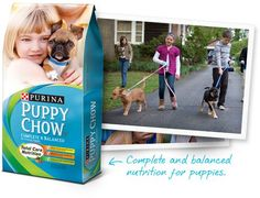Purina puppy Chow Coupons Australian Cattle Dog Puppy, Purina Puppy Chow, Christian Companies, Puppies Tips, Free Printable Coupons, Puppy Food, Dog Rules, Chow Chow, New Puppy