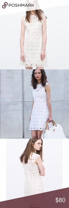 Lace dress zara ebay google