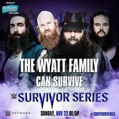 WWE Survivor Series 2015: The Wyatt Family can survive.