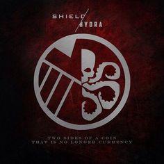 Shield / Hydra