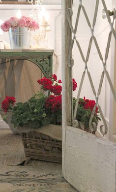 Red geraniums in wicker basket.Screen door as door to office Red Cottage, French Country Cottage, French Country Style, Cozy Cottage, Cottage Style, Country Farm, Country Living, Country Entryway, Country Patio