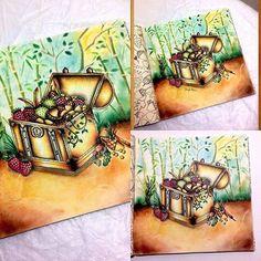 Lindooooooooo @Regrann from @sheylabrazs - O seu coração está, onde está o seu tesouro. E o seu tesouro precisa ser encontrado, para que tudo possa fazer sentido. (Paulo Coelho) ❤️#florestaencantada #livrosdecolorir #coloringbook #arteterapia #livrosinterativos #colorir #lostocean #colors #coloring #colorindo #livrosdecolorirantiestresse #artecomoterapia #arteterapiacriativa #colorido #colorful #colorindooinstagram #jardimsecreto #Regrann