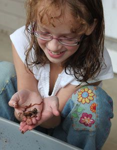 Our 11-year-old blogger Clair E. extols the virtues of vermicomposting and swears that raising worms is easy once you get things set up. From MOTHER EARTH NEWS magazine.