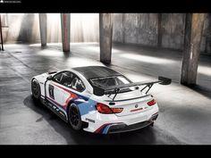 Fotos del BMW M6 GT3 - 5 / 32