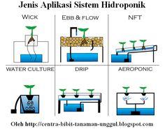 Ini adalah foto dari jenis aplikasi sistem hidroponik, jika anda ingin mempelajarinya secara details anda bisa mengunjungi http://www.centrabibit.tk/2016/08/panduan-dasar-budidaya-tanaman-hidroponik-lengkap.html