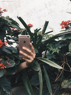 the latest photo diary on Noor Unnahar's blog is based on Metanoia - a magical word. This blog post has aesthetically pleasing tumblr photos, words quotes and some serious aesthetics  // indie grunge hipsters aesthetic iphone floral flowers photography //