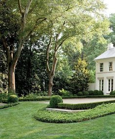 This can be accomplished with Boxwoods or Dwarf Yaupons and Ivy or Asiatic Jasmine as the