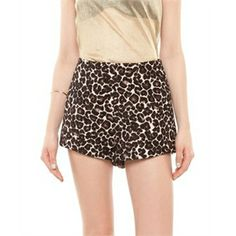Cameo – Luck Now Shorts – Shorts (Leopard) - Clothing Direct From The Factories