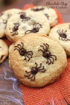 Chocolate Chip Spider Cookies These 11 best Halloween cookie recipes are so fun we can hardly stand it. Perfect for a fun treat at home, school parties or your next Halloween bash. Halloween Cupcakes, Plat Halloween, Halloween Cookie Recipes, Halloween Desserts, Halloween Food For Party, Halloween Treats, Easy Halloween, Halloween Biscuits, Halloween Carnival
