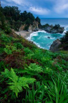 McWay Falls  Big Sur California [OC] [19783000] #reddit